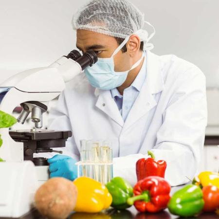 Hygienebeauftragter Lebensmittel